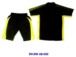 DV-DW AB 020