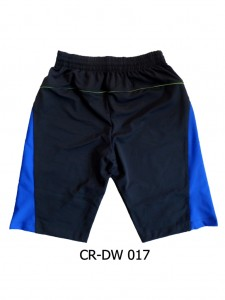 CR-DW 017