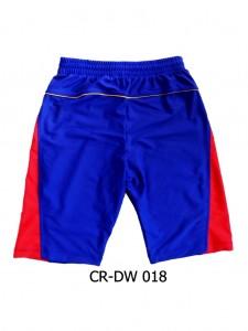 CR-DW 018