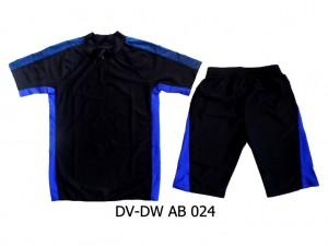 DV-DW AB 024