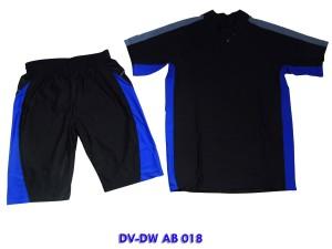 DV-DW AB 018