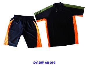 DV-DW AB 019