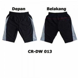 CR-DW 013
