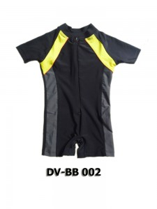 DV-BB 002