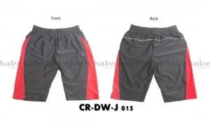 CR-DW-J 015