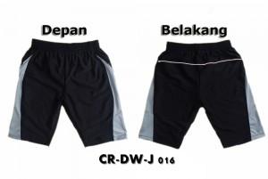CR-DW-J016