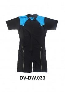 DV-DW-033