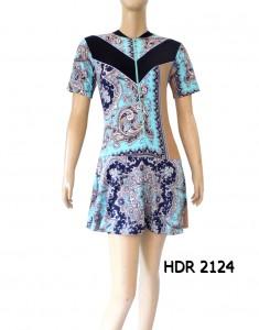 HDR 2124