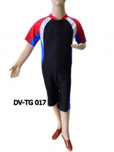 DV-TG 017